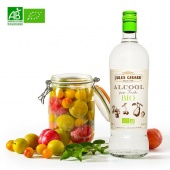 Alcool pour Fruits Bio 100cl
