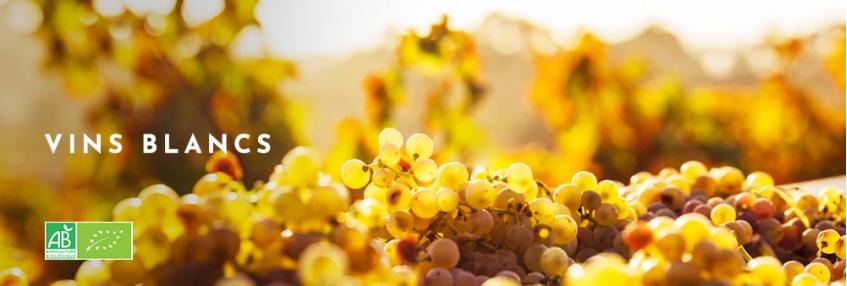 Vins Blancs bio